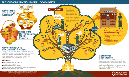 cct-grad-model_infographic_final_en1_SMALL