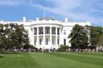 The White House_424x283