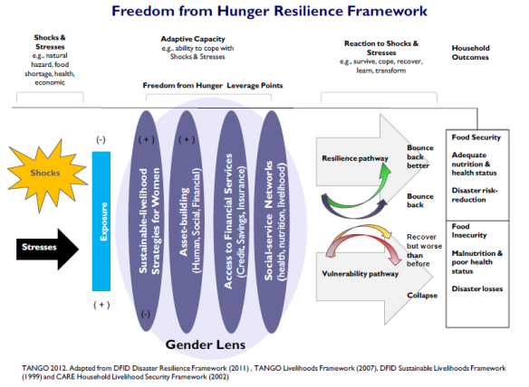 Freedom from Hunger Resilience Framework