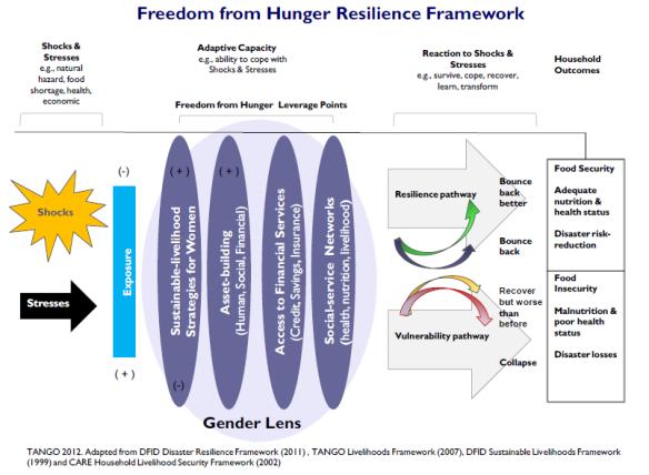 Freedom from Hunger Resilience Framework